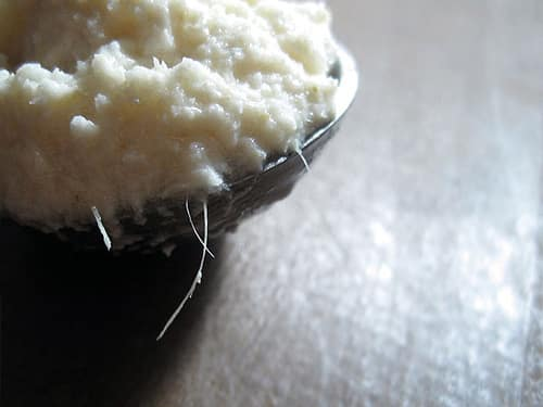 What Is Horseradish?