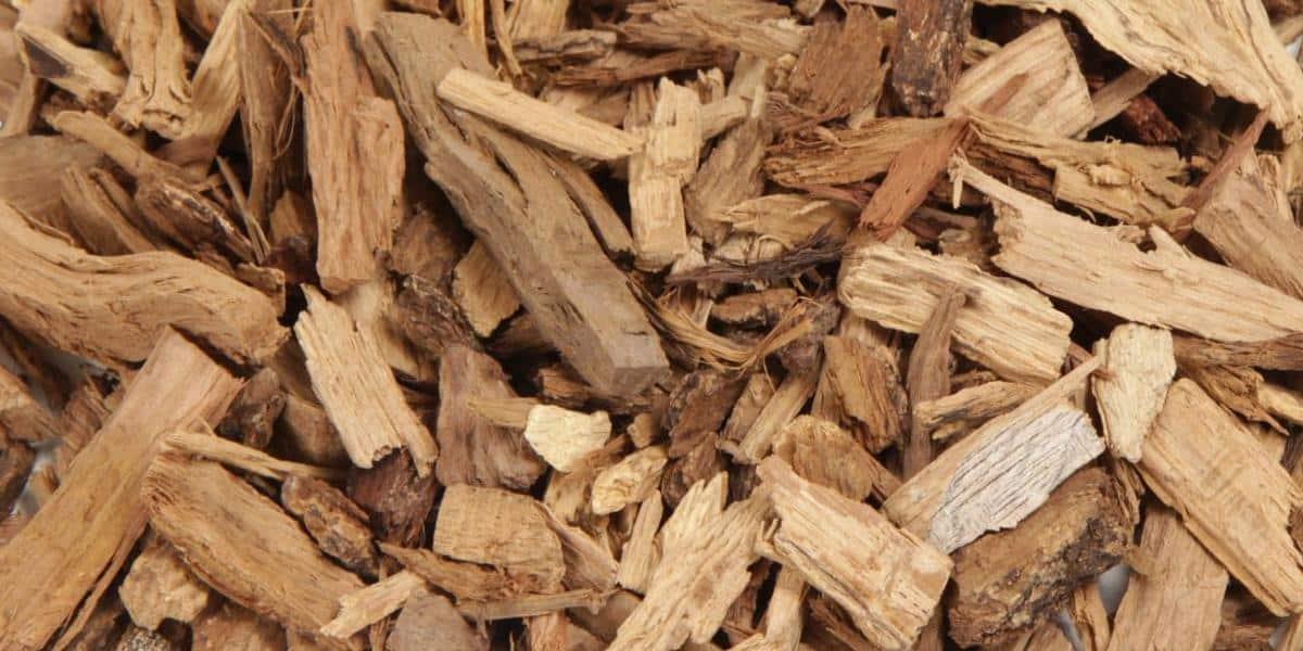 oak wood chips