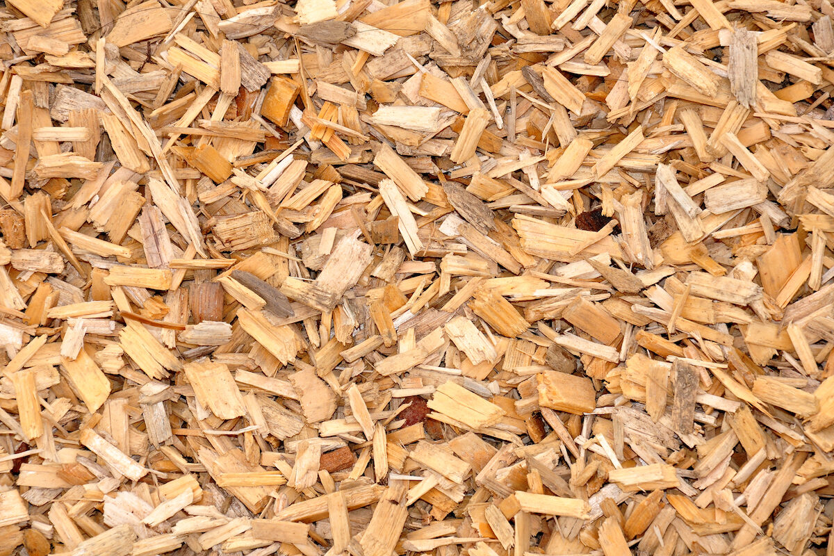 orange wood chips